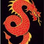 Drachen-Aufnäher gestickt